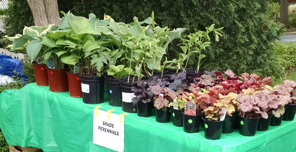 table of plants 2016
