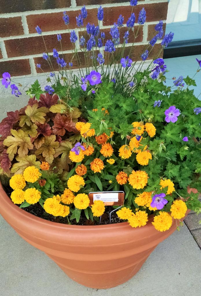 planter at arts in bartlett