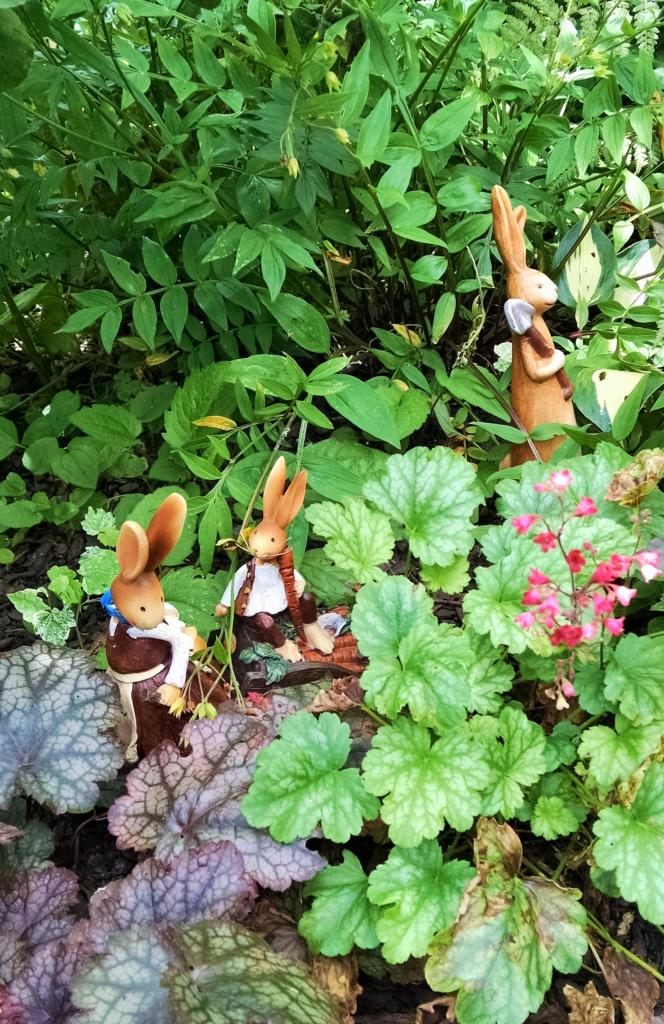 Jill bunny